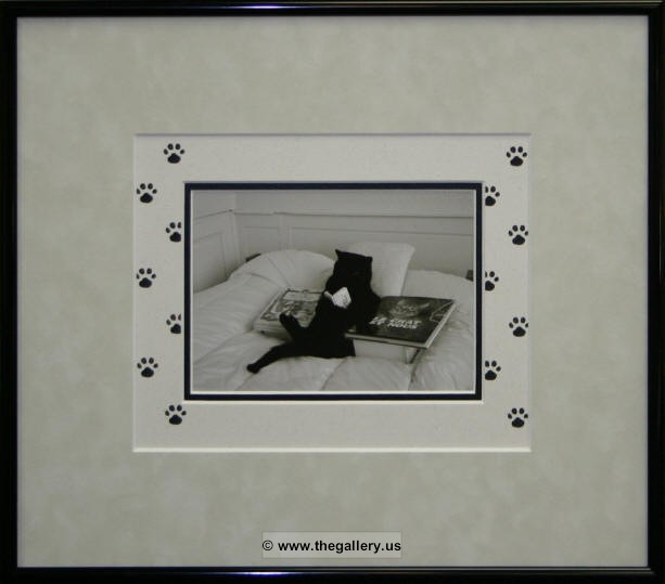 Matting and Framing Made Easy Janean Thompson