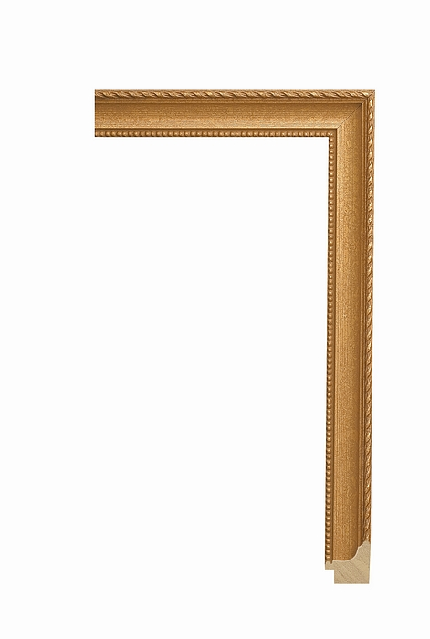 Larson Juhl CLASSIC GOLD 1 1/8 406CG Picture Frame Moulding